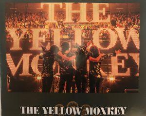 黄猿を観にドームへ